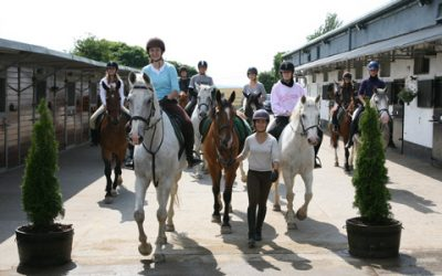SLIGO REITERHOF – Für Pferdeliebhaber 11 – 18 Jahre